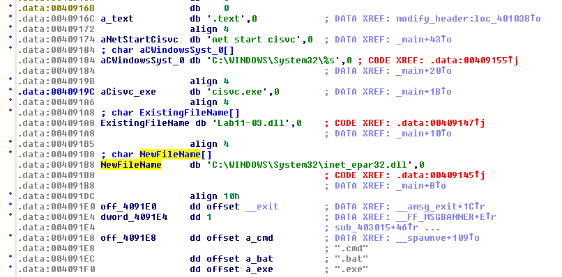 Data associated with shellcode
